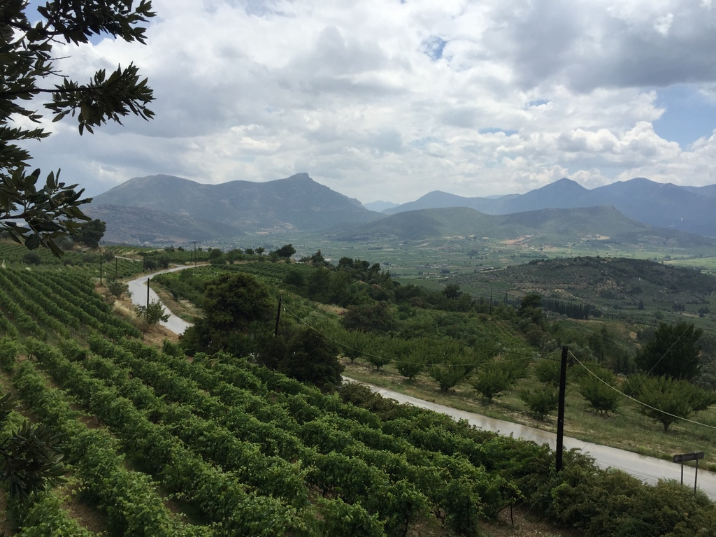 View of the Nemea valley