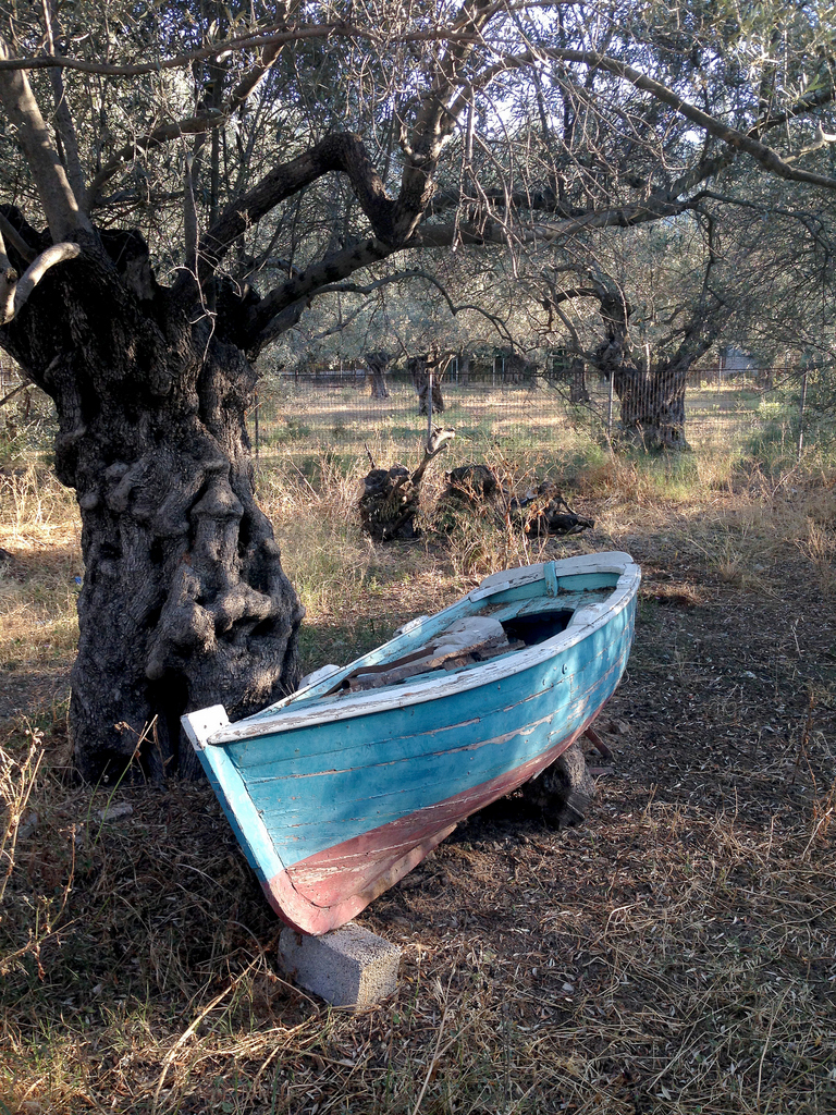 Those olive trees are a few hundred years old. The boat? who knows...